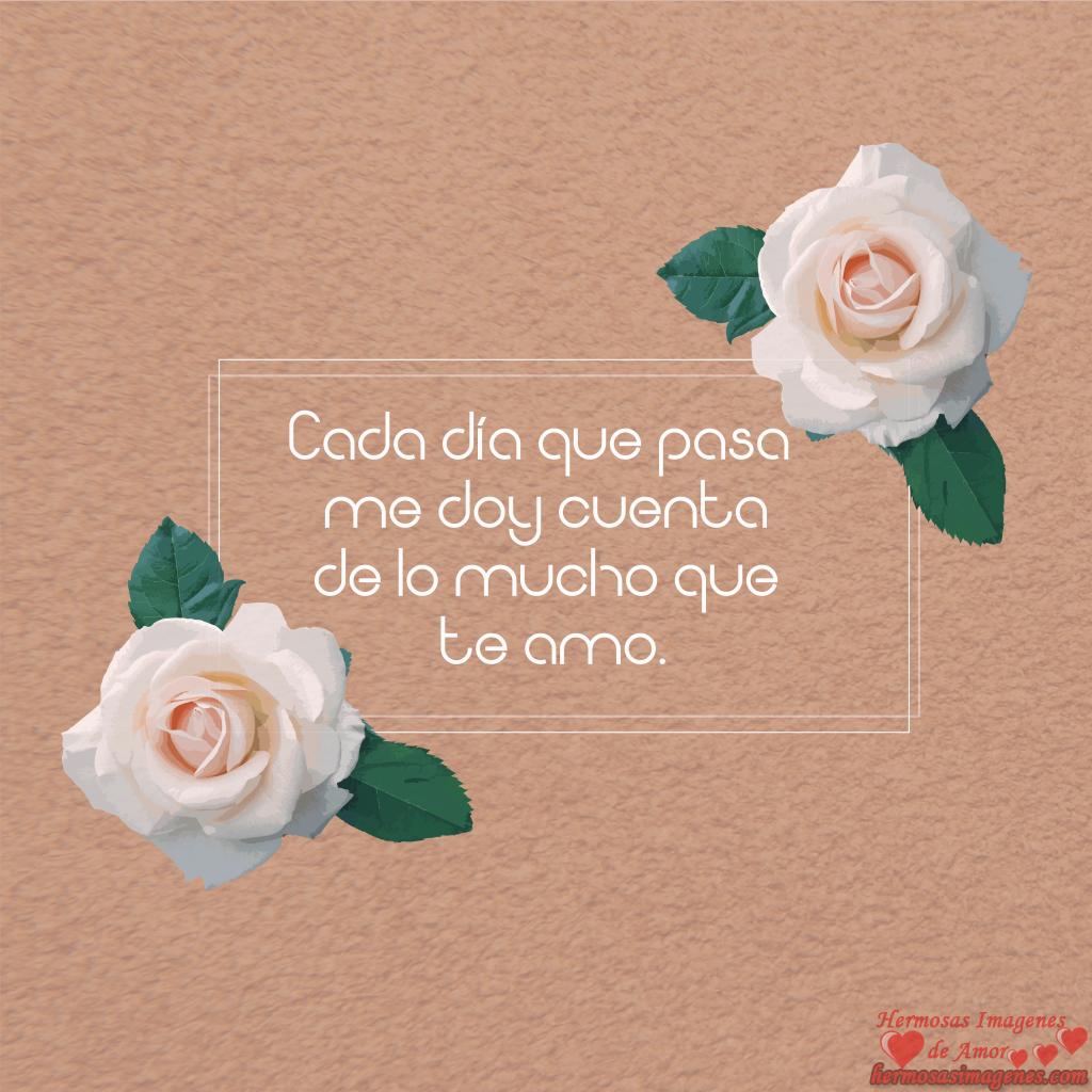 7 Hermosas Imagenes De Rosas Blancas Con Frases De Amor Hermosas